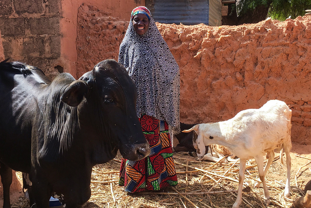 Maimuna's livestock serve as both a long-term investment and a savings plan