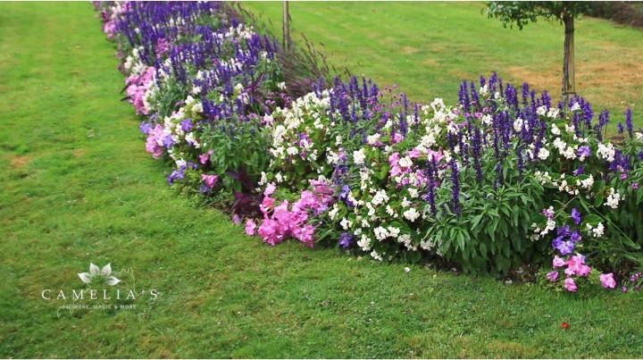 aranjamente-florale-strat