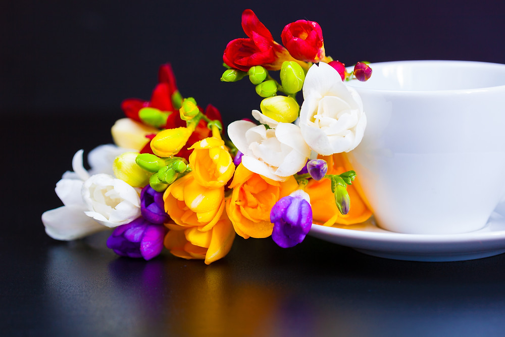 Pret Engross si Endetail - Flori de Primavara