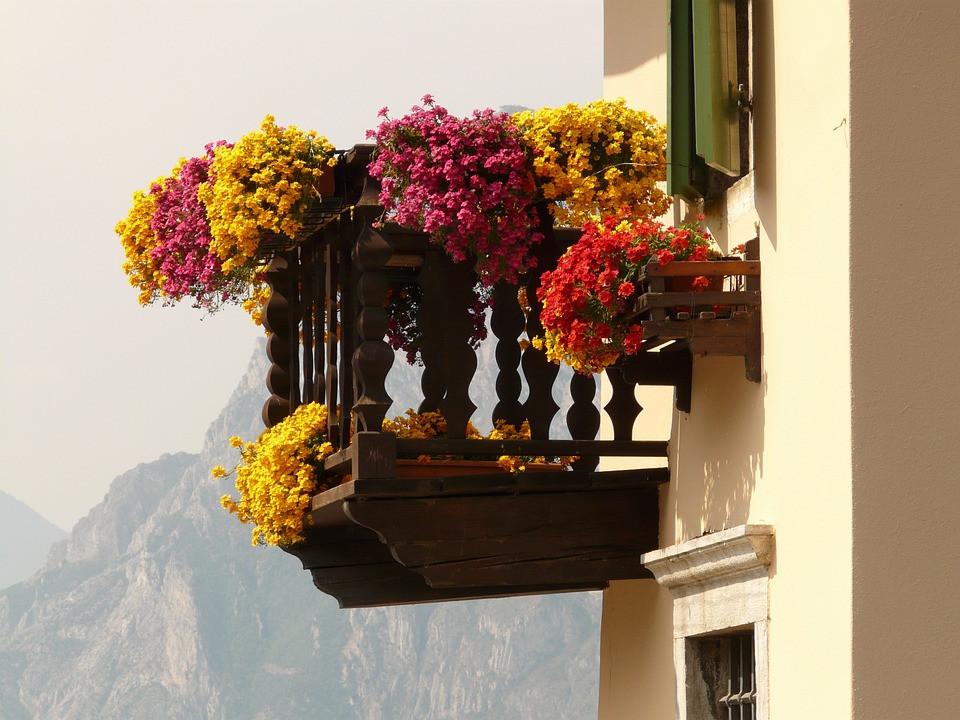 Muscate-Curgatoare-Balcon
