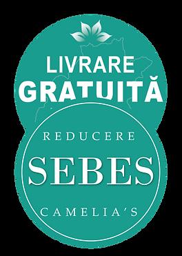 Logo Sebes 2019.png