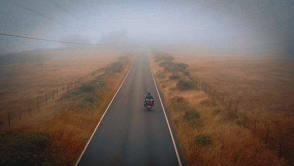 Le long de la cote, le matin est très brumeux