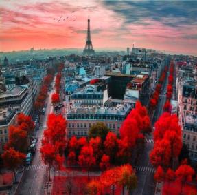 France in red_edited.jpg