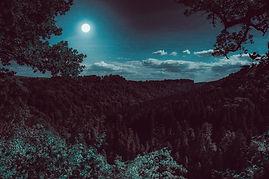 Nachtwanderung Schwarzwald.jpg