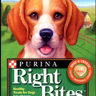 PURINA RIGHT BITES