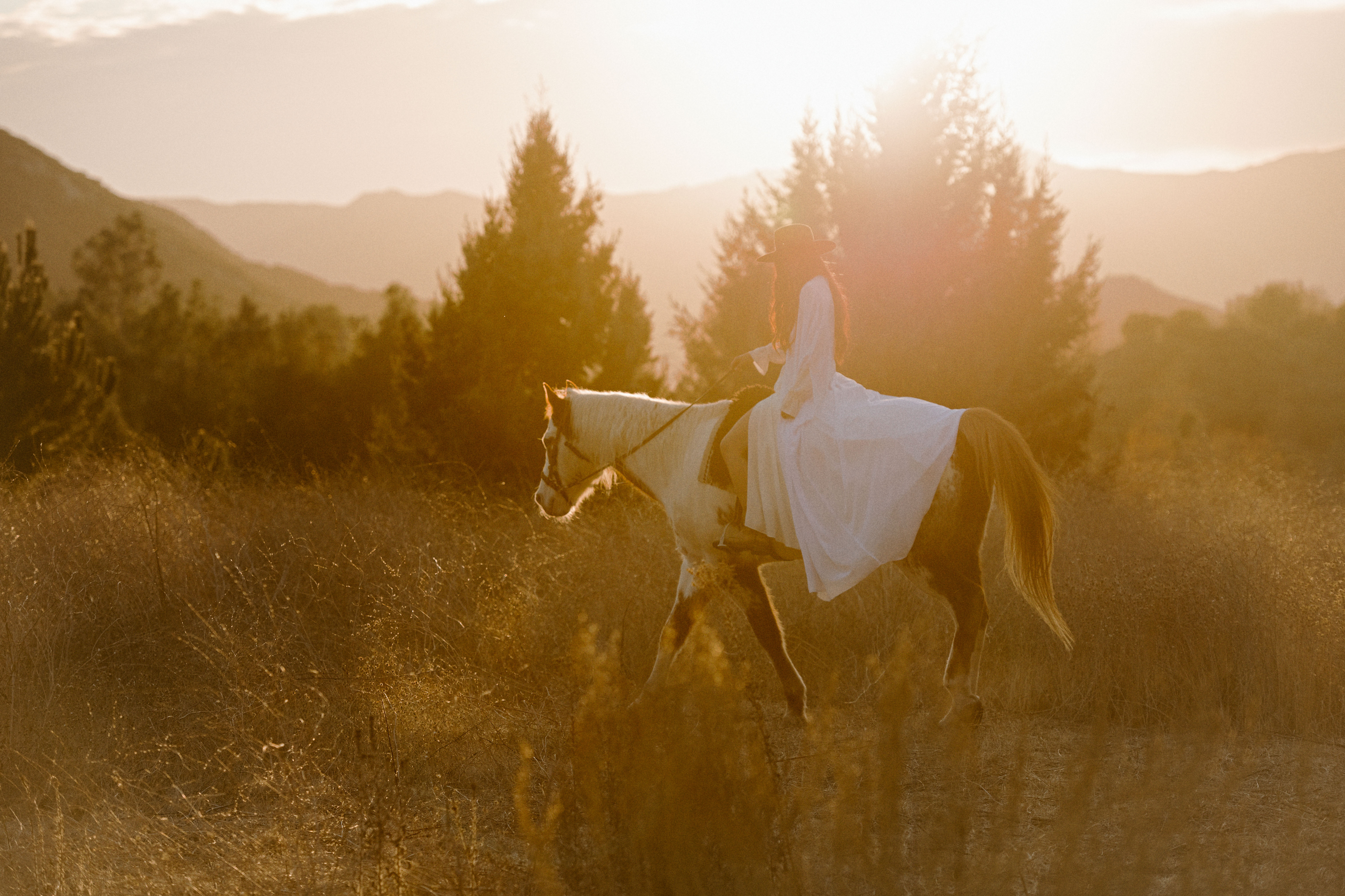 Connecting with the problematic horse
