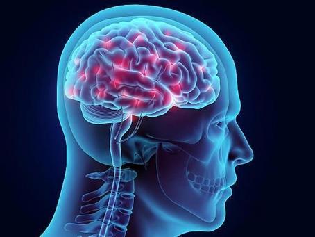 Hur påverkas hjärnan under en coachingprocess?
