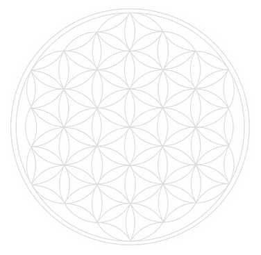 flower-of-life-1079763_1920_edited.png