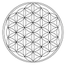 flower-of-life-1079763_1920.png