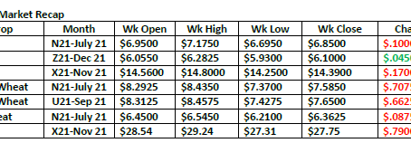 Market Thoughts 06.13.21