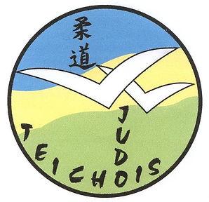 judo teichois
