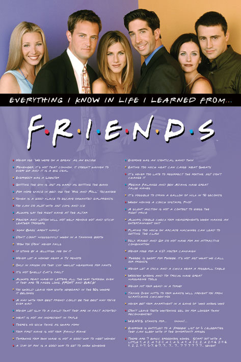 POSTER M PY PP 31619 FRIENDS EVERYTHING
