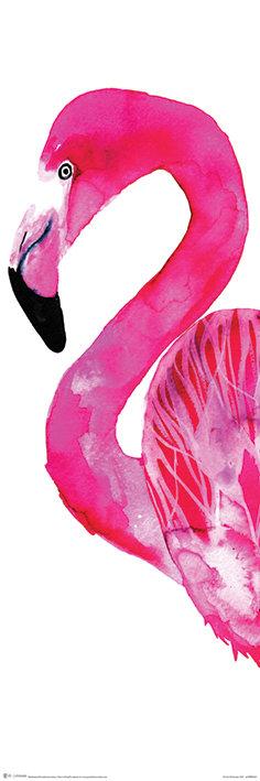 Pôster H -Flamingo