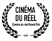 logo cinema reel.png