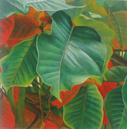 santol leaves 2