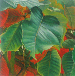 santol leaves 2