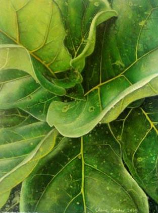 leaf 13