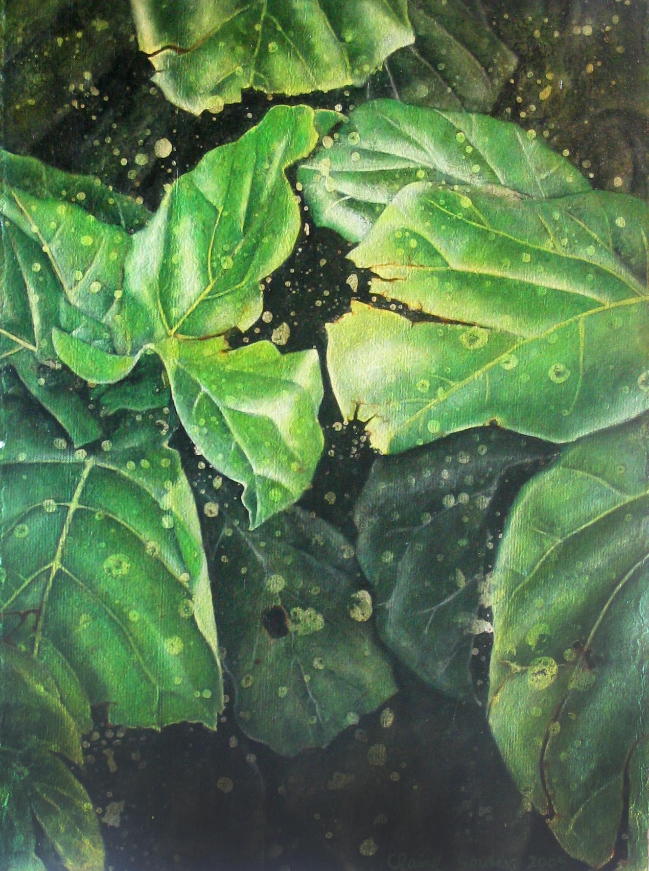 leaf 17
