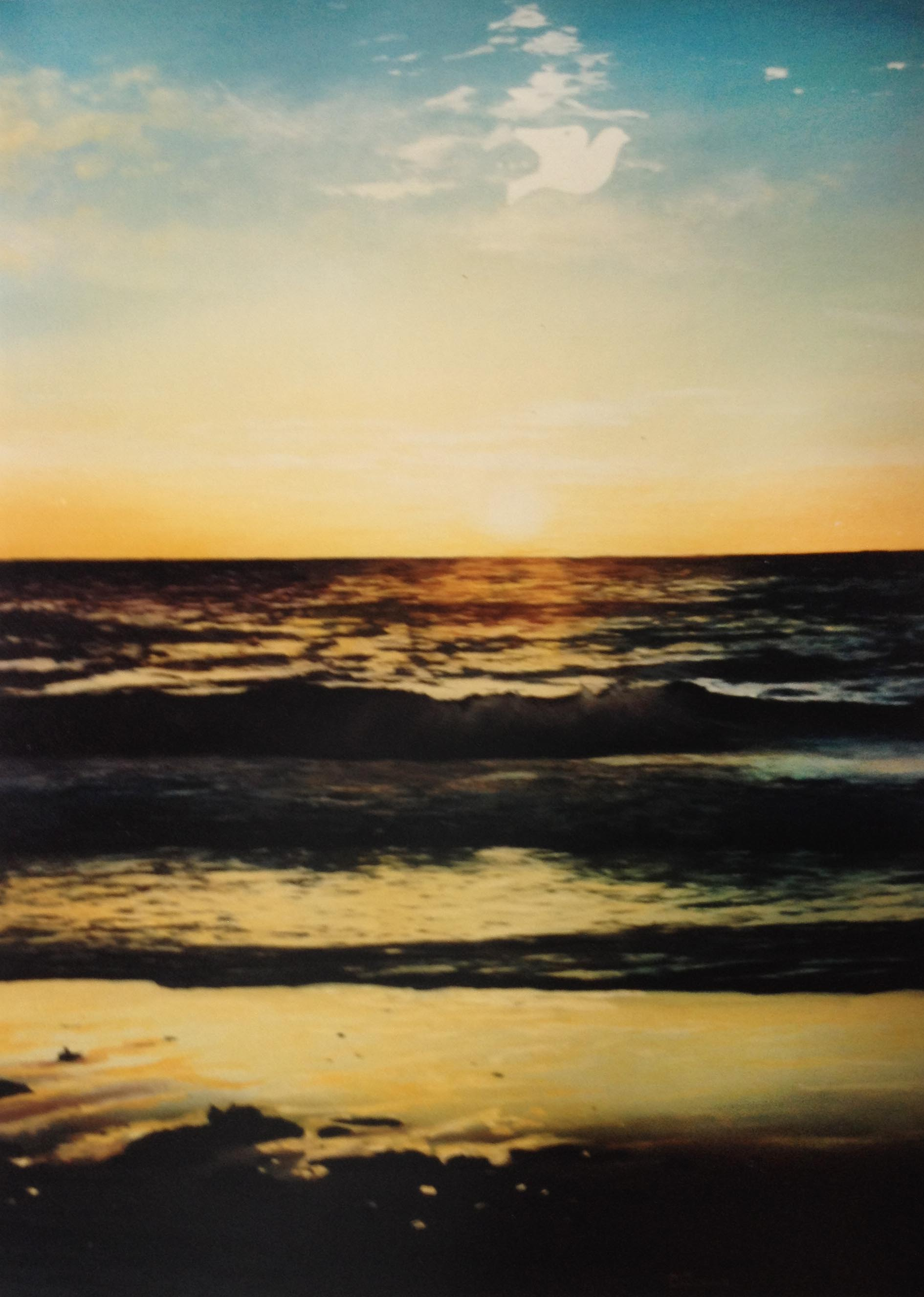 evening shoreline