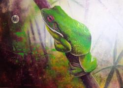green tree frog 4
