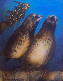 bird space