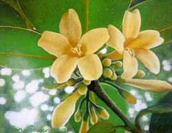 rainforest flower 1