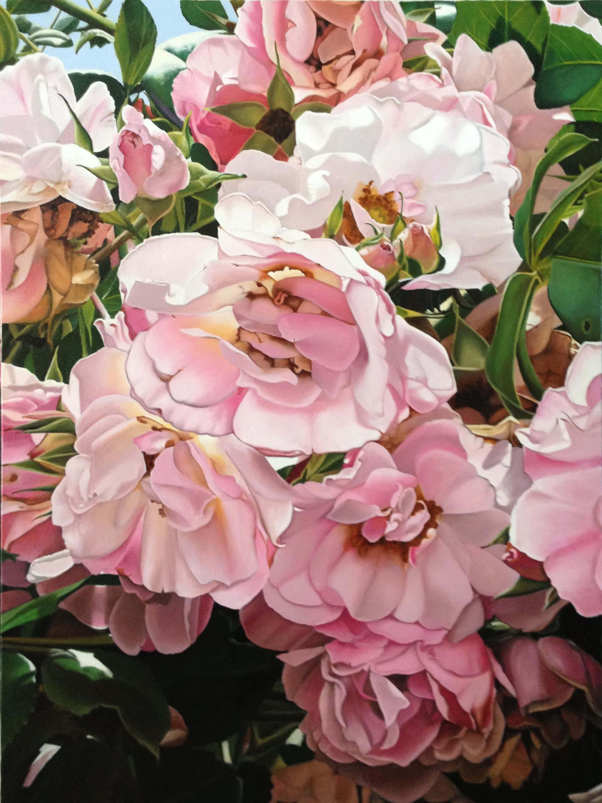 rose abundance part 1