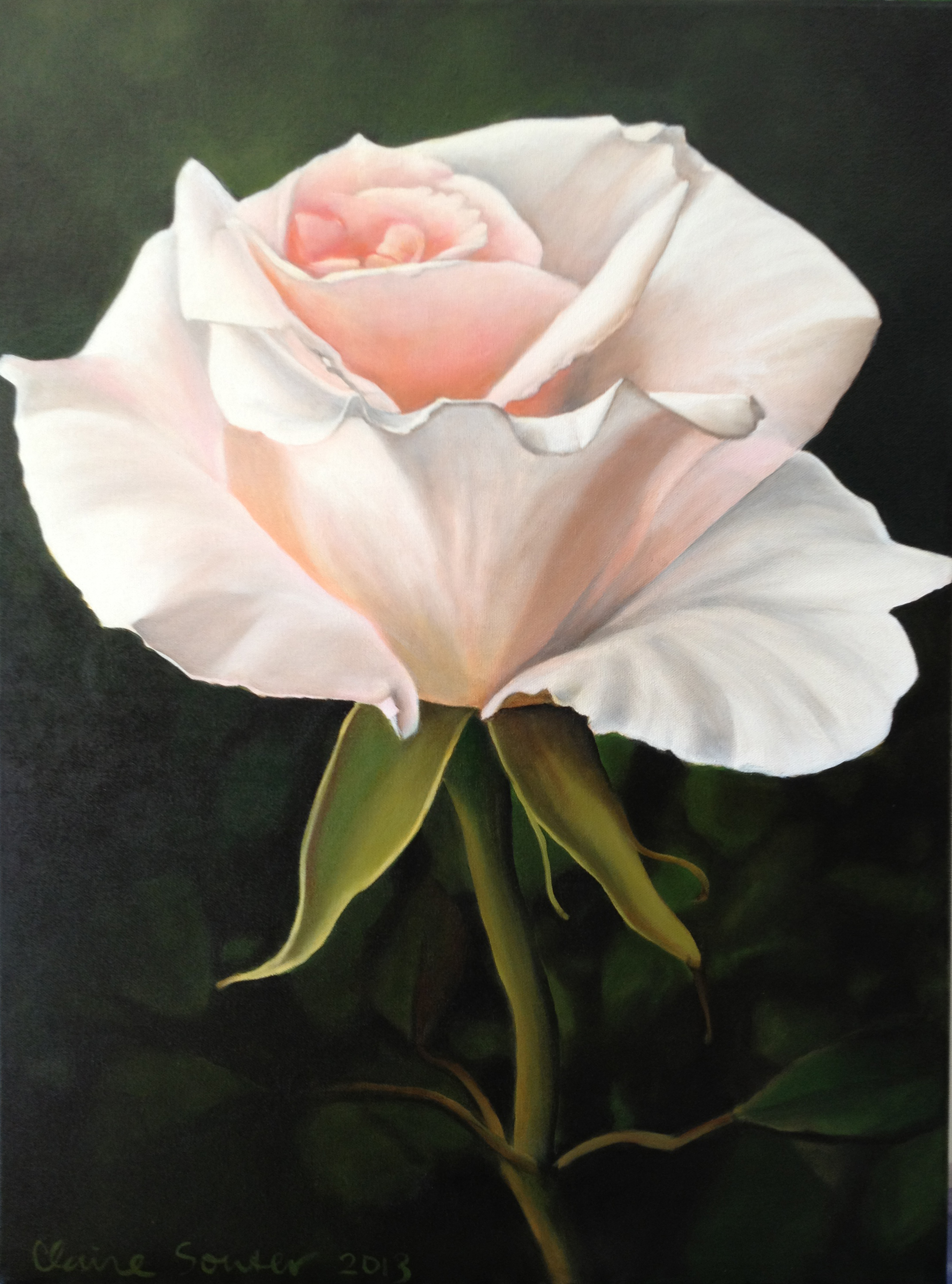 Luke's rose