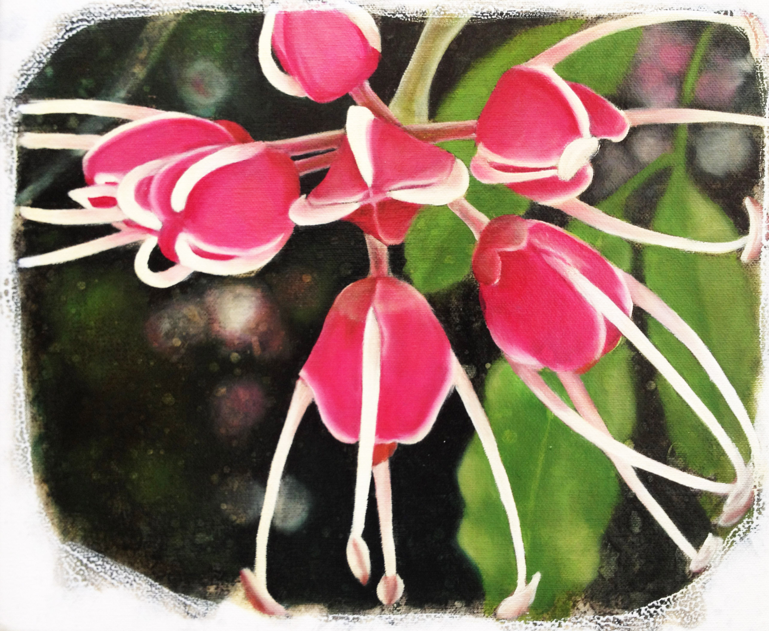 Gondwana's garden #9