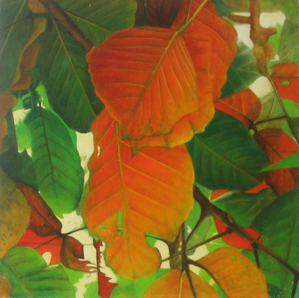 santol leaves 1