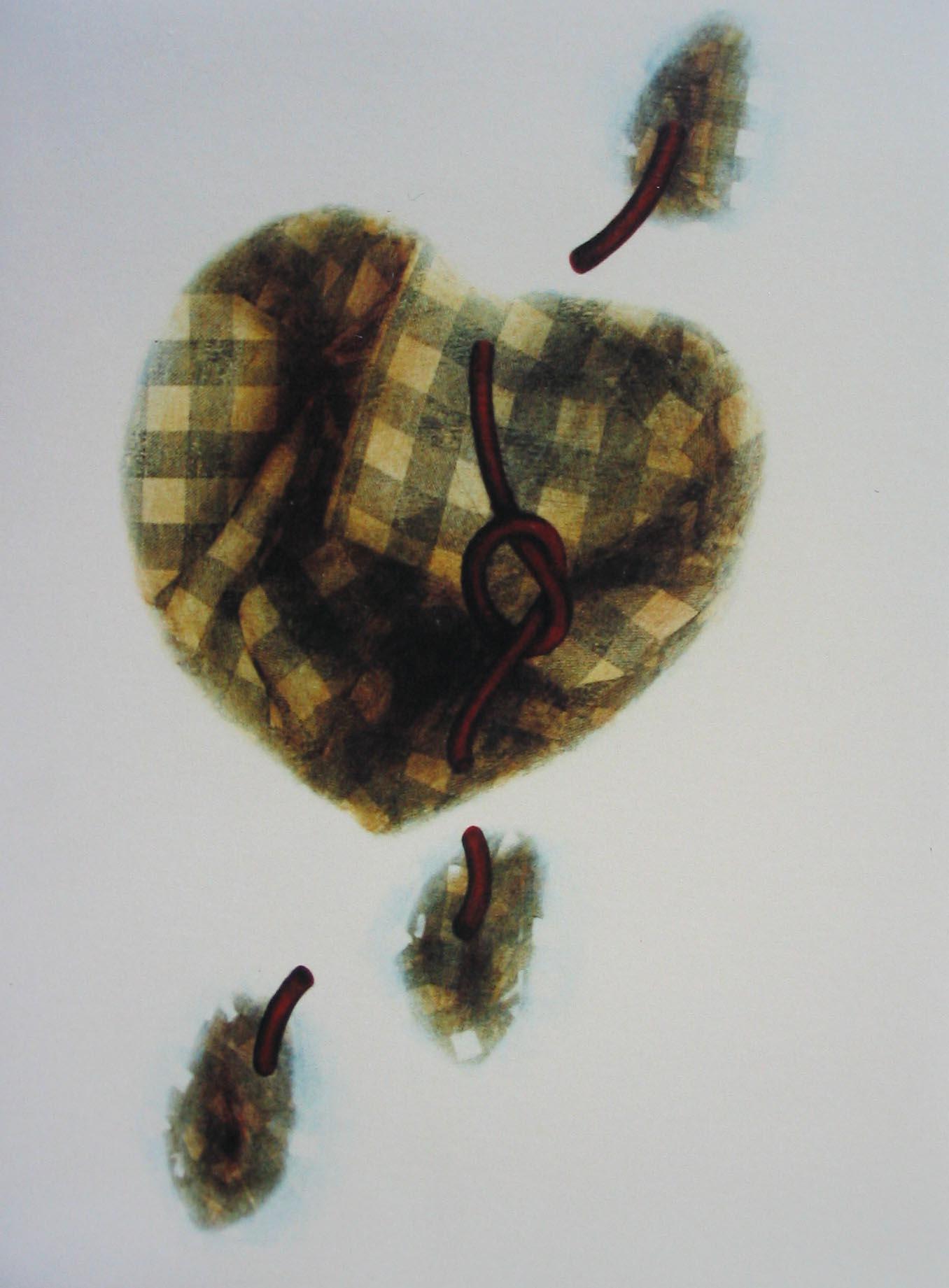 cuore 14