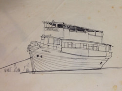 sketch for Goolwa boat