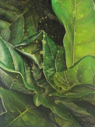 leaf 19