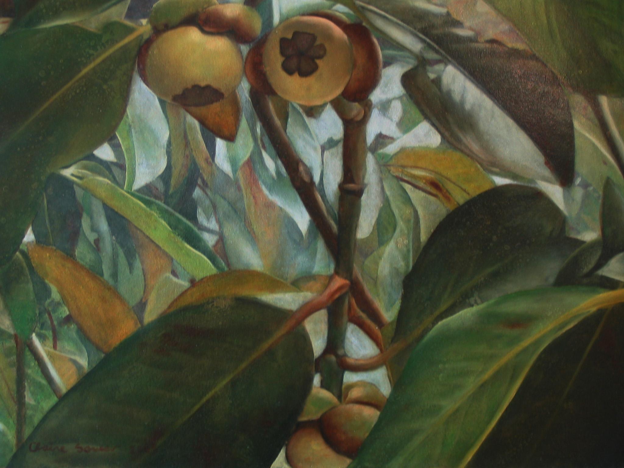 mangostens
