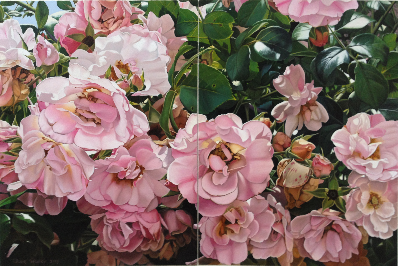 more rose abundance