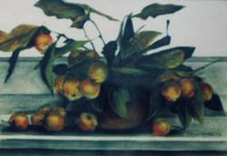 crab apples 2