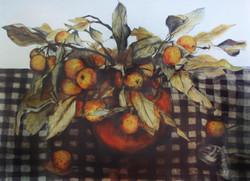 crab apples 1
