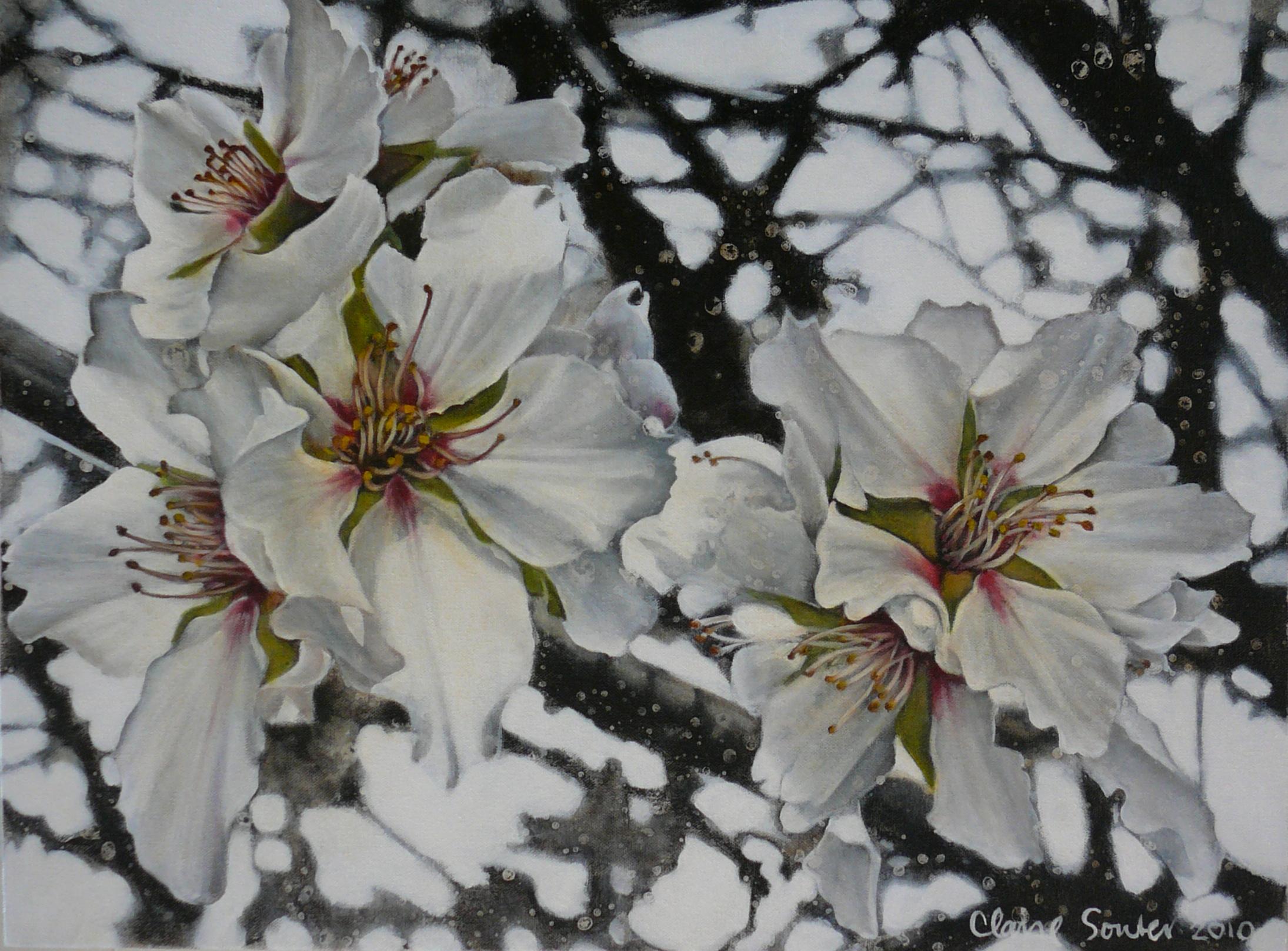 white blossom 1