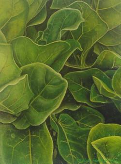 leaf 14
