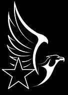 Eagle Star Books logo inverted .jpg