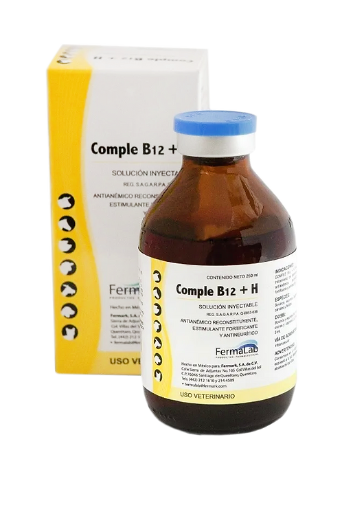 Comple B12+H 250 ml