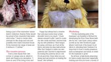 Teddy Bear Times Feature