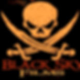 Black Sky Entertainment Logo_edited.jpg