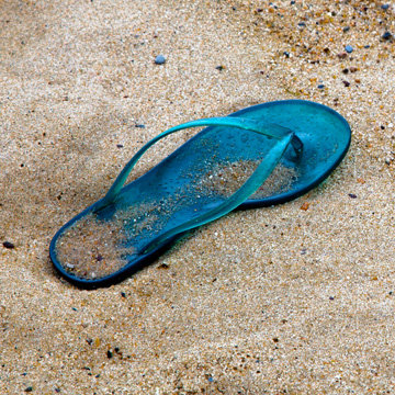 Blue Flip Flop img 0791
