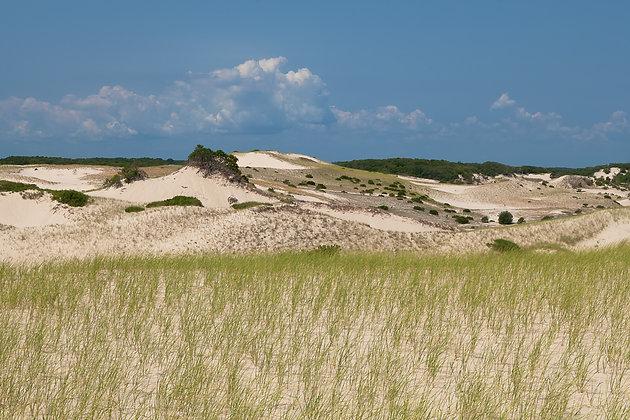 Parabolic Dunes Img 0574