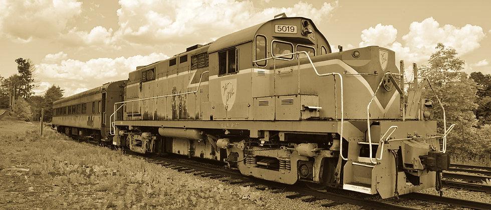 Old No. 5019 IMG 0250