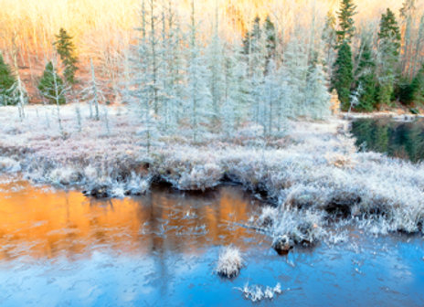 Frosty Morning at Bald Mountain Pond img 8590