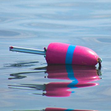 Pink Buoy img 7301