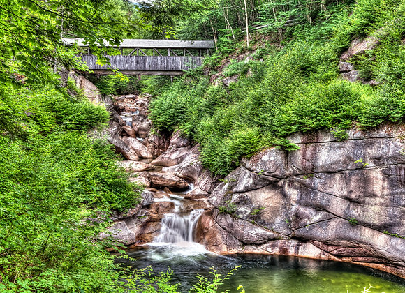 Sentinal Pine Bridge IMG 8094