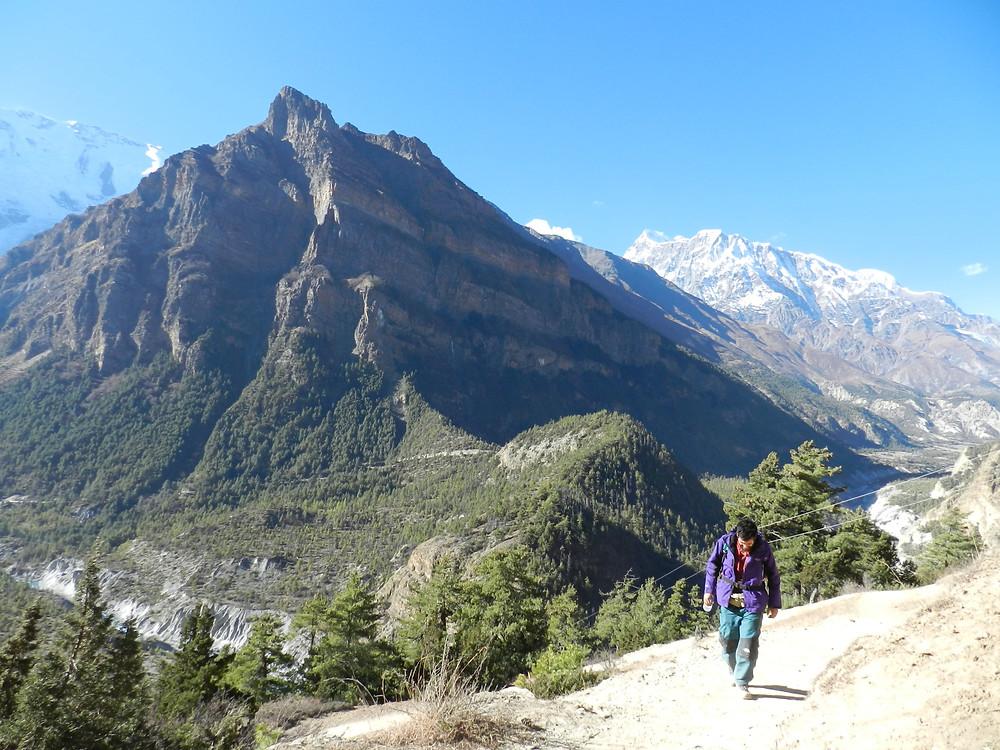 things to do in pokhara, trekking